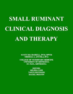 Small Ruminant Clinical Diagnosis and Therapy