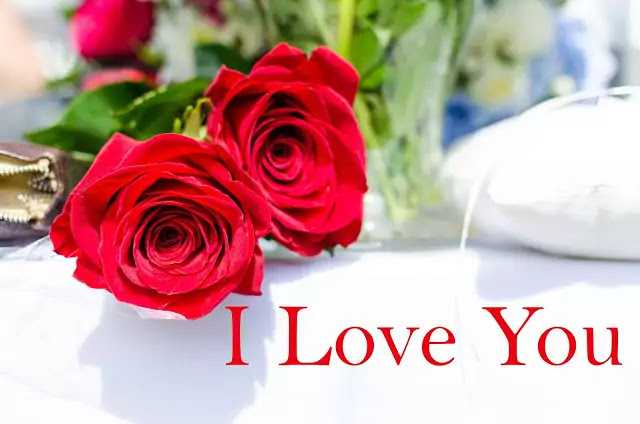 rose love photo hd download