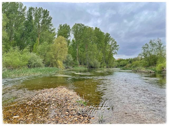 IMG 1142 - Dos jornadas, mismo río. Parte 1