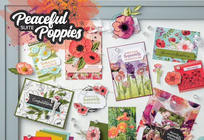 Stampin' Up! Peaceful Poppies suite 2020 Mini Catalog samples
