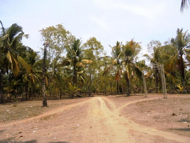 Calon Kawasan Industri Kebumen Berada di Kawasan Rawan Tsunami