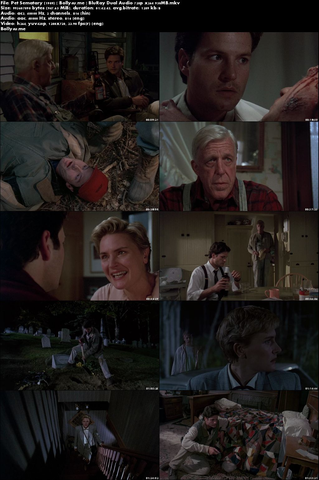 Pet Sematary 1989 BluRay 350MB Hindi Dual Audio 480p Download