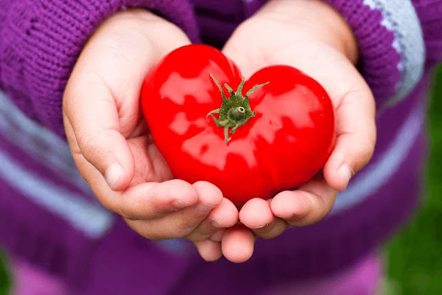 Lower back pain - back pain - tomatoes