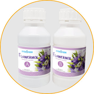 Hydrofarm Nutrition FlowerMix AB (liquid) Apply Flowermix AB, the roses and orchids will be fresher. This fertilizer is a hydroponic nutrient containing nutrients that are essential for the growth of various types of flower plants. Can be applied to roses, chrysanthemums, orchids, and others. Its content supports the growth of flower plants to make them more fertile and fresher. So, your garden will look more beautiful. This fertilizer also contains mineral salts which dissolve easily in water. A set of this product is divided into parts A and B. The content of the two is different, you can adjust it to the needs of your flower plants. Choose Flowermix AB for a fresher floral look.