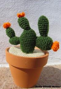 http://ainoslabores.blogspot.de/2013/05/cactus.html#more