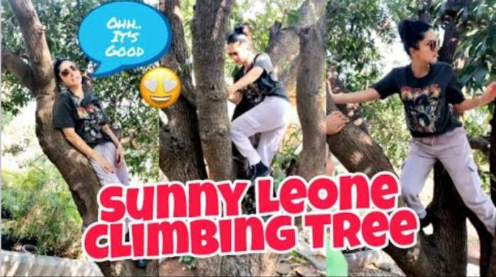 sunny leone climbing on tree