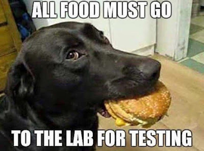 All food must go to the lab for testing
