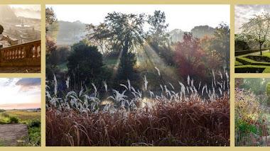 Jardines para soñar. Fotografías premiadas en IGPOTY N.9:  Beautiful Gardens