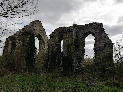 Grey abbey, Kildare.