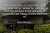 Galeri:  Save Wae Sano dari Monster Geothermal