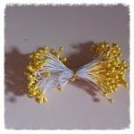 http://www.foamiran.pl/pl/p/Preciki-do-kwiatow-ciemny-zolty/257