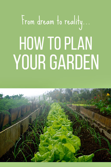 Tips for planning a vegetable garden so you can grow healthy, organic food for your family. #vegetablegarden #garden #gardening #growyourown #organic