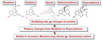 long-term prednisone use
