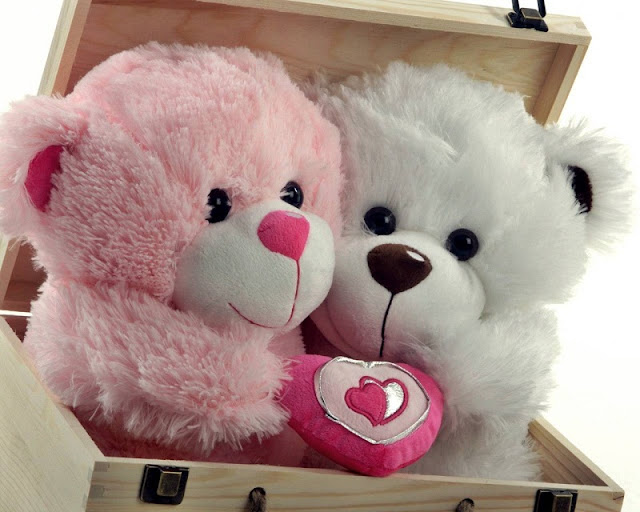 happy teddy day 2018, images on happy teddy day 2018, 2018 teddy bear images