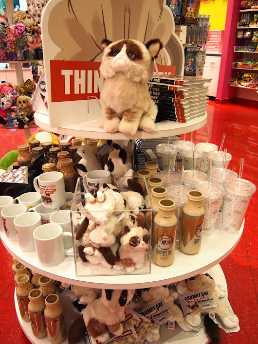 Grumpy cat at the candy store.