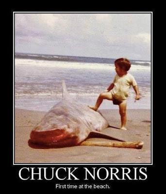 Chuck Norris Jokes
