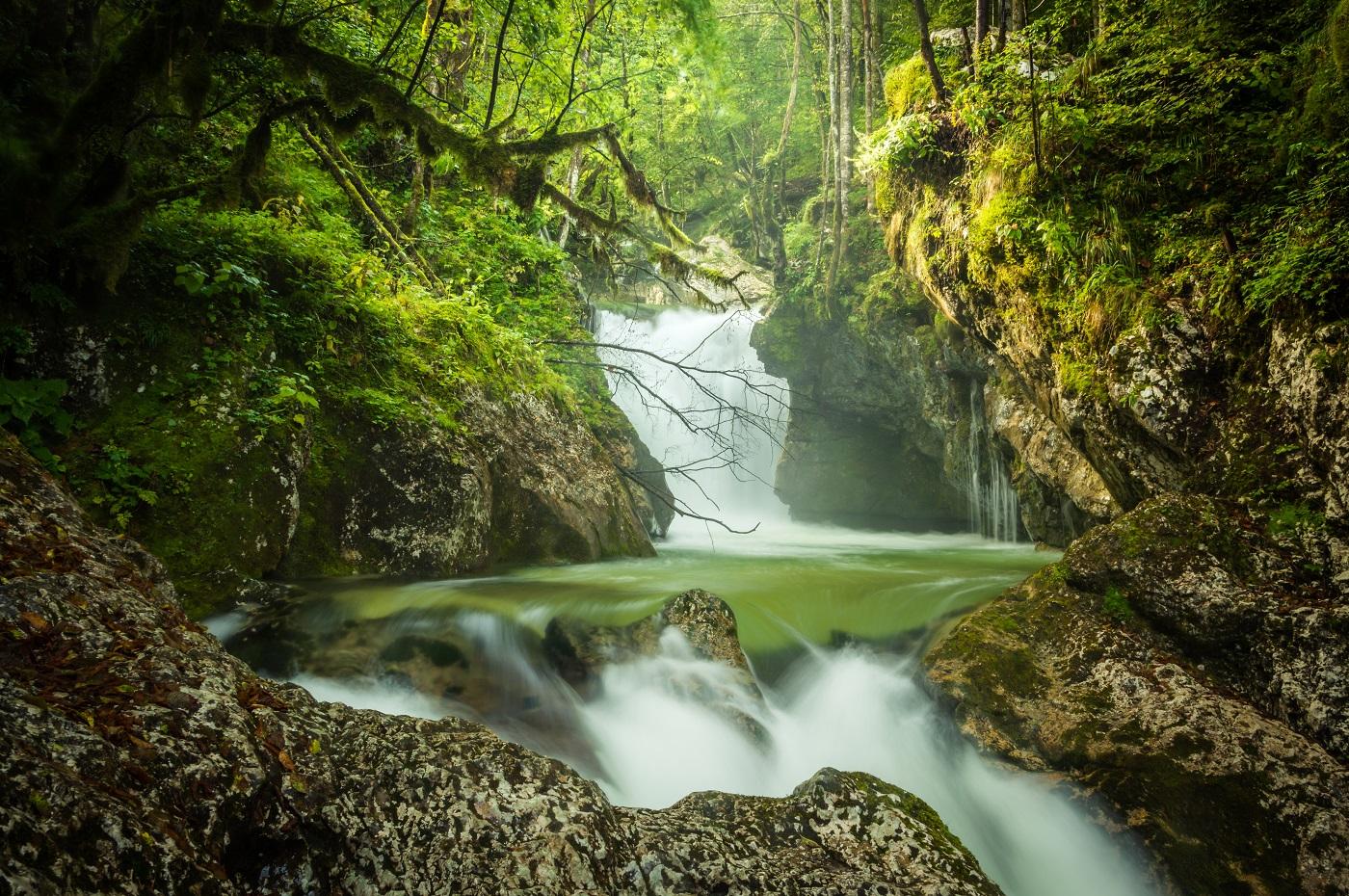 Słowenia Dolina Soczy Sunikov vodni gaj