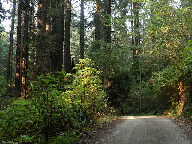 road and trail are available