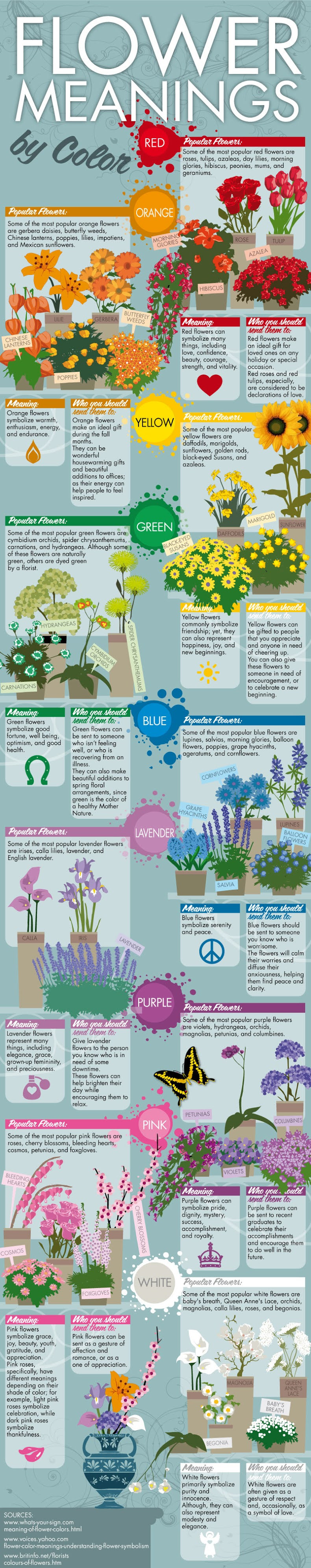 Flower Meanings By Color #infographic #Flowers #infographics #Flower Meanings #Flowers Color