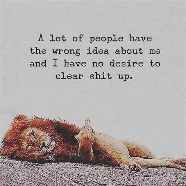 lion air memes, lion king memes and gifs, lion in athlone memes, lion cub athlone memes, lion king animation memes, memes about lion king, lion king live action memes