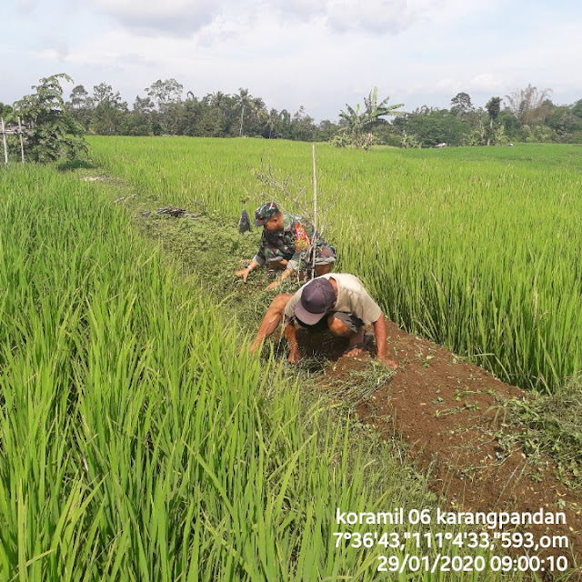 Kodim Karanganyar - Komsos Babinsa Bangsri Dengan Petani di Desa Binaannya