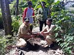 Tanam Bambu Petung untuk Lestarikan Sumber Mata Air Badean