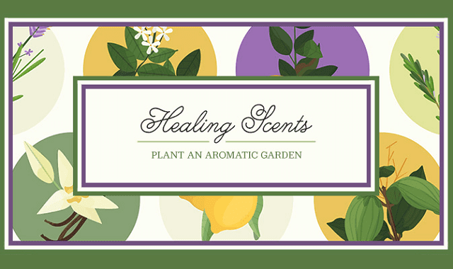Healing Scents: Plant an Aromatic Garden