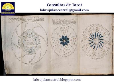 Páginas del Manuscrito Voynich
