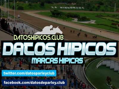 DATOS HIPICOS | MARCAS HIPICAS【2020】