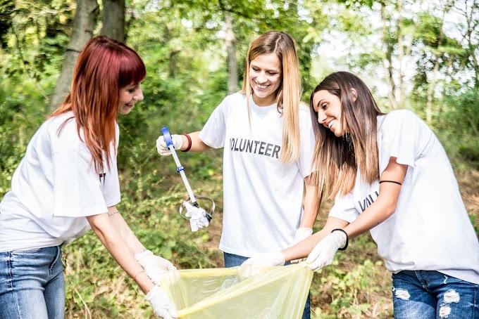 Építőtáborozók rendezik a Kis-Balaton környezetét
