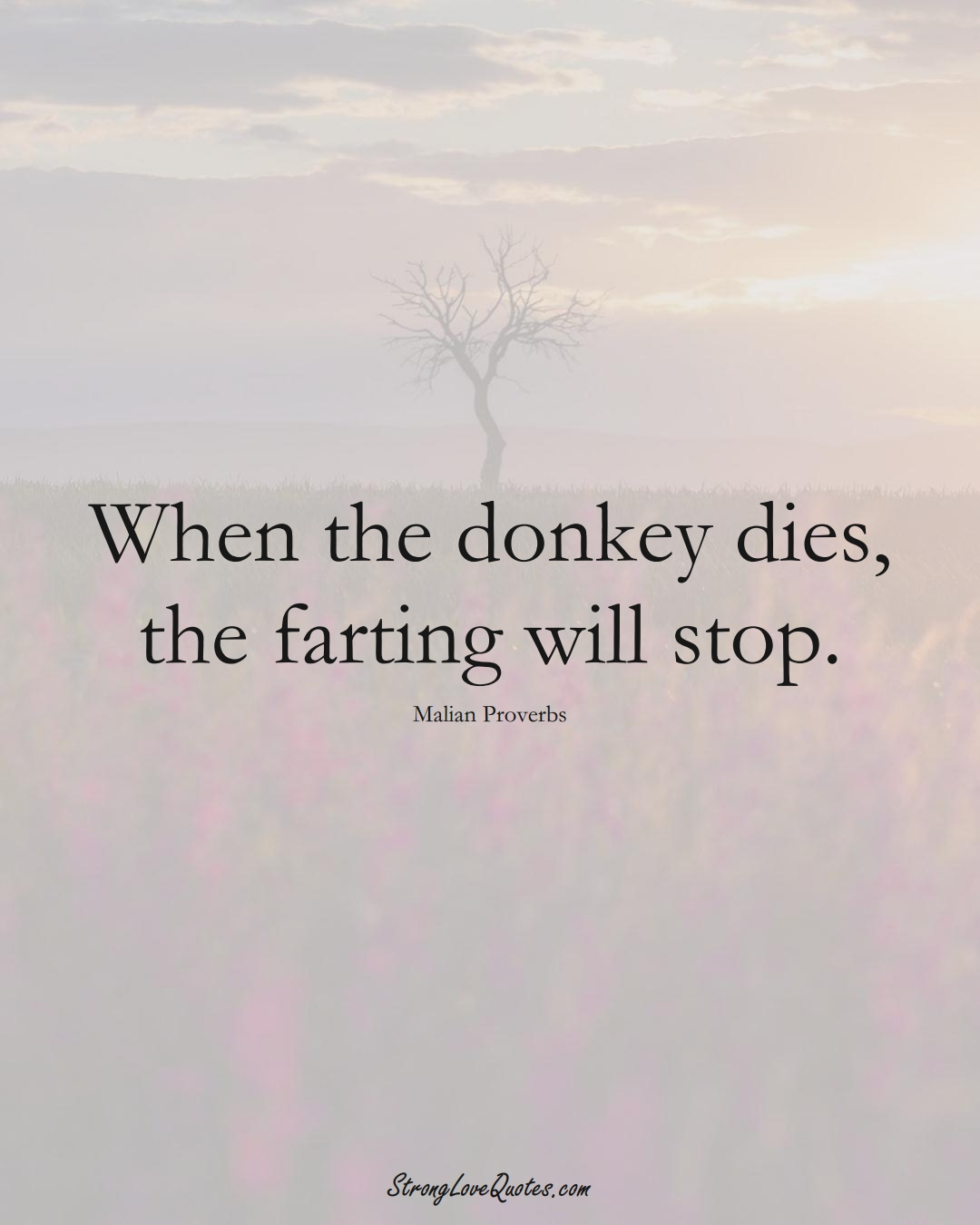 When the donkey dies, the farting will stop. (Malian Sayings);  #AfricanSayings