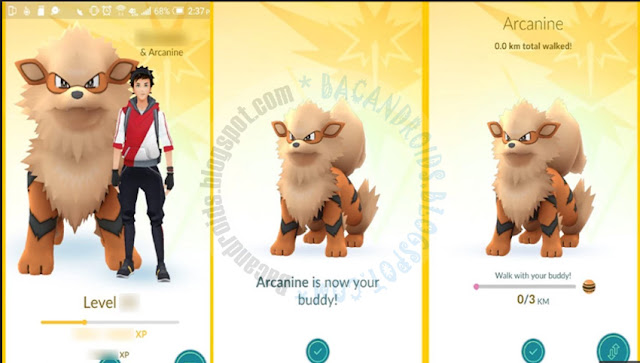 POkemon Go 0.37 Terbaru For Android Buddy Pokemon