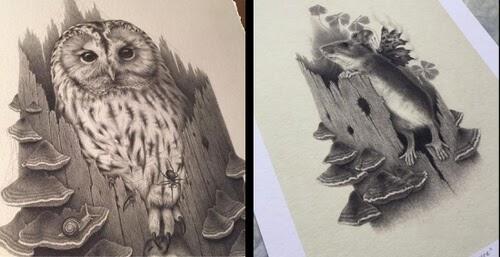 00-Pencil-Drawings-Katrin-Berge-www-designstack-co
