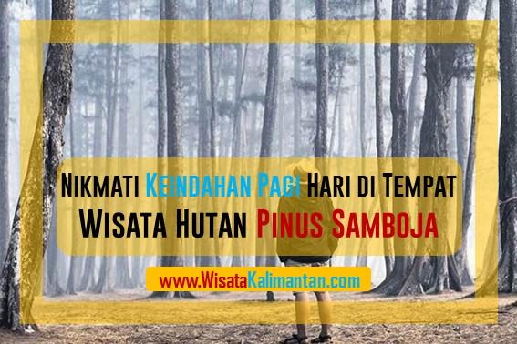 Tempat Wisata Hutan Pinus Samboja, Kalimantan Timur