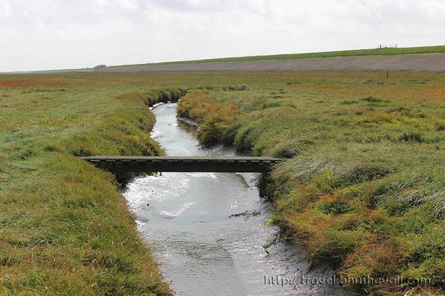 UNESCO Wadden Sea De Schorren