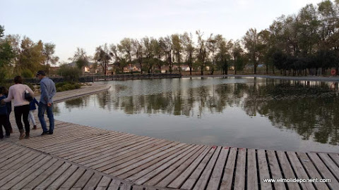 llac artificial de 4000m2