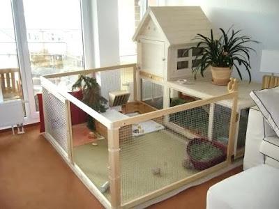 Gambar Kandang kelinci indoor