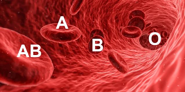 هل النظام الغذائي القائم على فصيلة الدم يقي من الأمراض؟