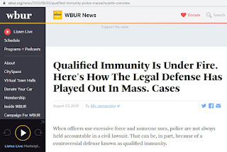 WBUR has a real good article on the details of qualified immunity