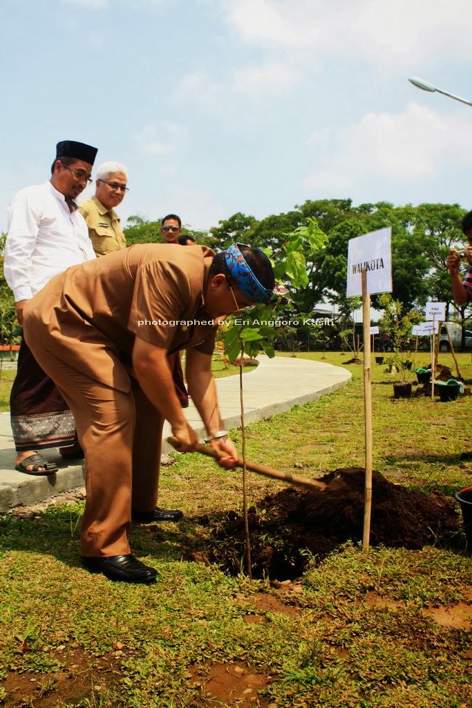 Walikota Tasikmalaya Melakukan Penanaman Pohon