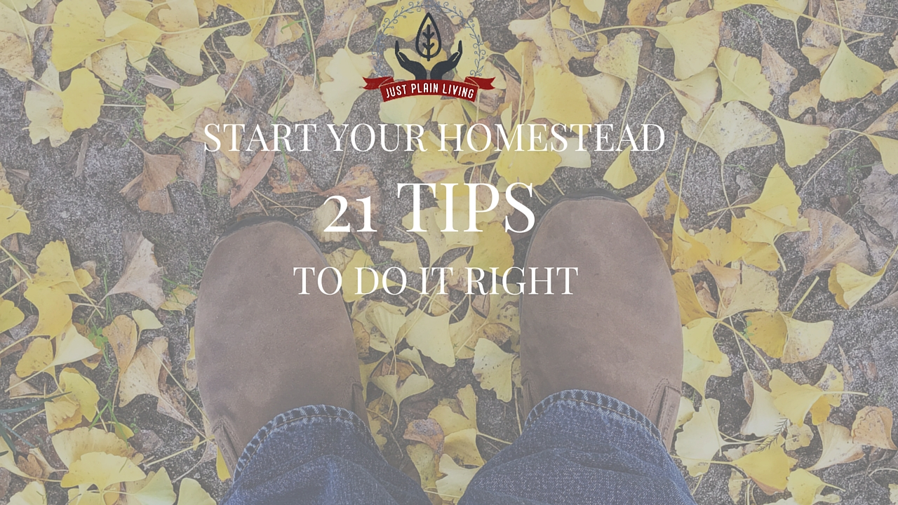 Start your homestead of on the right foot with these tips!