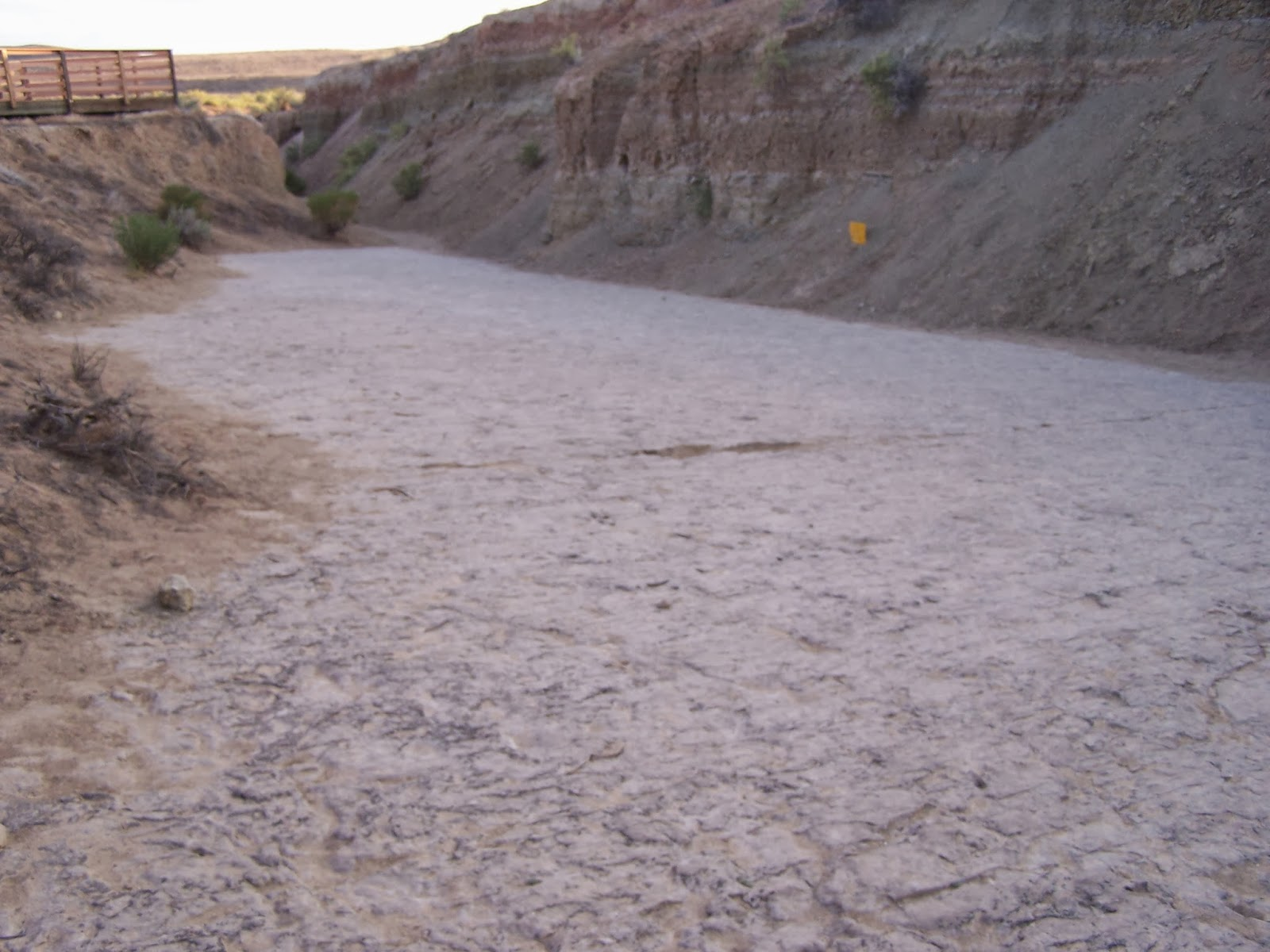The Sayre Rv Odyssey Red Gulch Dinosaur Tracksite