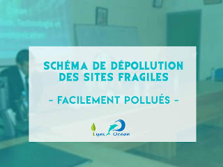 schema de de-pollution des sites fragiles ( facilement pollues)