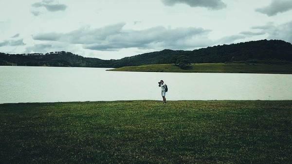 """""""Cây cô đơn"""" hồ Suối Vàng Đà Lạt"""
