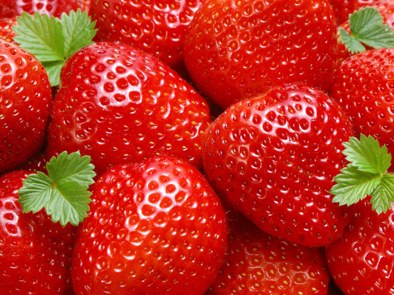 Wallpapers Strawberry Wallpapers
