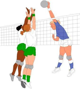 20 Macam Cabang Olahraga Beserta Penjelasannya Artikel Materi