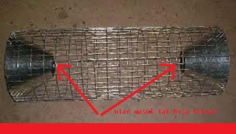 gambar alat perangkap ular