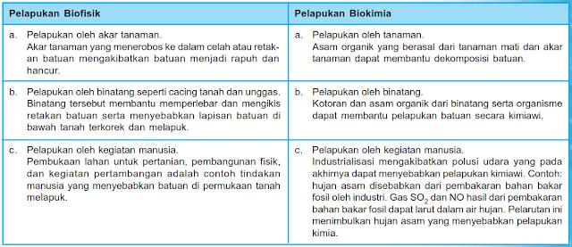 Beda pelapukan biofisik dan biokimia