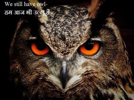 क्या हम आज भी Owls-उल्लू है