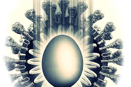 Telur Ayam Sebelum Fajar | Cerpen Edy Hermawan